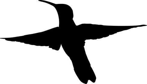 ハチドリのイラスト:ハミングバードアップデートのイメージ