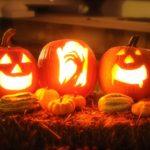 ハロウィン用のカボチャの画像